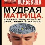 Максим Сумароков «Мудрая матрица, или Эффективное управление собственной жизнью»