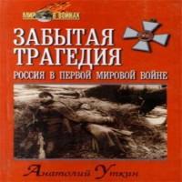 Забытая трагедия. Россия в первой мировой войне (аудиокнига)