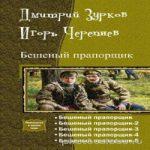 Зурков Дмитрий, Черепнев Игорь — Бешеный прапорщик (аудиокнига)