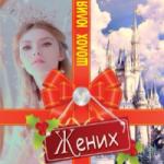 Шолох Юлия — Жених(аудиокнига)