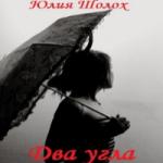 Юлия Шолох — Два угла (аудиокнига)