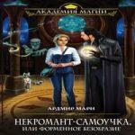 Ардмир Мари — Некромант-самоучка, или Форменное безобразие (аудиокнига)