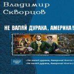 Владимир Скворцов — Не валяй дурака, Америка! Дилогия в одном томе (аудиокнига)