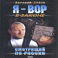 Смотрящий по России (аудиокнига)