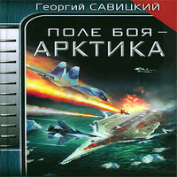 Поле боя - Арктика (аудиокнига)
