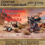 Георгий Смородинский — Стальные Волки Крейда (аудиокнига)