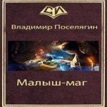 Владимир Поселягин — Малыш-маг (аудиокнига)