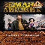 Владимир Стрельников — Простые оружные парни (аудиокнига)