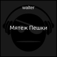Мятеж Пешки (аудиокнига)