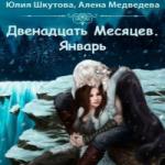 Алена Медведева, Шкутова Юлия  — Январь (аудиокнига)