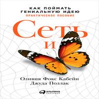 Сеть и бабочка. Как поймать гениальную идею. Практическое пособие (аудиокнига)