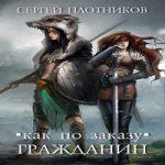 Сергей Плотников  — Гражданин (аудиокнига)