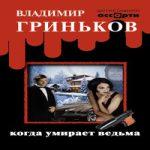 Аудиокнига Когда умирает ведьма — Владимир Гриньков