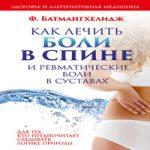 Аудиокнига Как лечить боли в спине и ревматические боли в суставах — Ферейдун Батмангхелидж