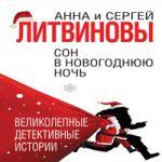 Аудиокнига Сон в новогоднюю ночь (сборник) — Анна и Сергей Литвиновы
