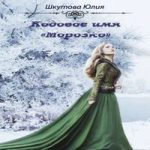 Аудиокнига Кодовое имя «Морозко» — Шкутова Юлия