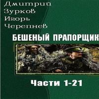 Аудиокнига Бешеный прапорщик. Части 1 - 21