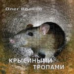 Аудиокнига Крысиными тропами — Олег Волков