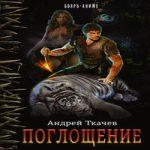 Аудиокнига Поглощение — Андрей Ткачев