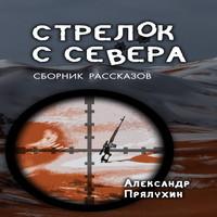 Аудиокнига Стрелок с Севера - Александр Прялухин