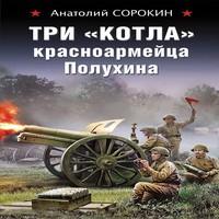 Аудиокнига Три «котла» красноармейца Полухина