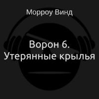 Аудиокнига Ворон 6. Утерянные крылья