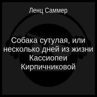 обложка Собака сутулая, или несколько дней из жизни Кассиопеи Кирпичниковой